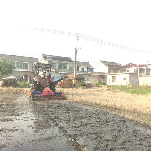 水田旋耕打浆一体机